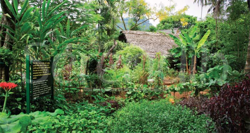 Matale f szer s batik for House garden design sri lanka